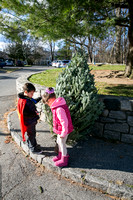 2016 Huguenot Church Christmas Tree Sale for The Pelham Post