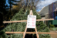 Huguenot Church Christmas Tree Sale for The Pelham Post