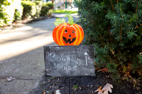 35th Annual Pelham Children's Center Pumpkin Festival by Moon Baby Photo for The Pelham Post