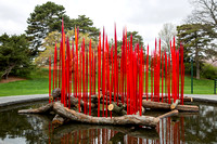 Press Preview of Chihuly Art Installation at NYBG