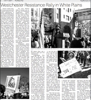 Westchester Resistance Rally White Plains NY photos by Moon Baby Photo in February 16 2017 issue of The Pelham Post